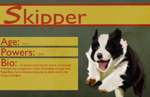 Access Avenger Skipper